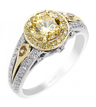 Two-Tone Halo Ring KS9011-R